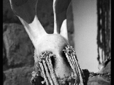 Paul Toupet – sculptures / bunny creature