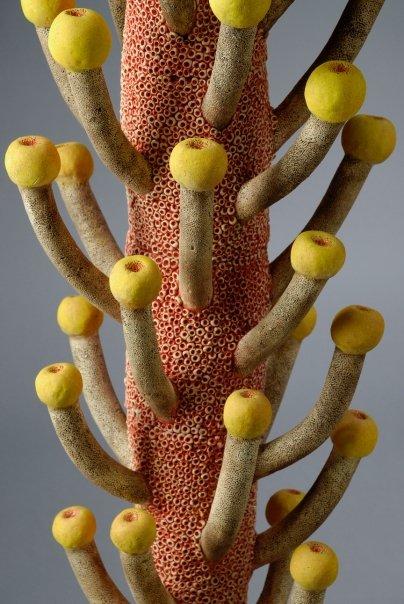 Leigh Taylor Mickelson – Botanical sculptures