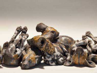 Nick Mackman – Huddle of wild dog pups