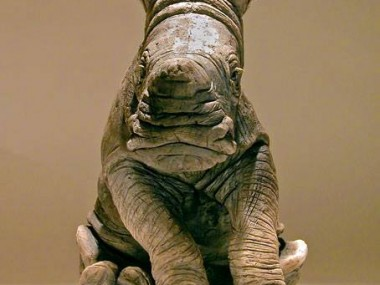 Nick Mackman – Rhino baby sculpture