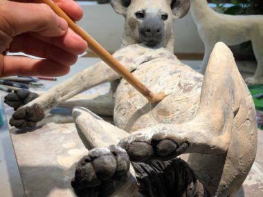 Nick Mackman sculpture – Glazing the Hyena sculpture