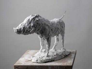 Nicola Hicks – Boar sculptures