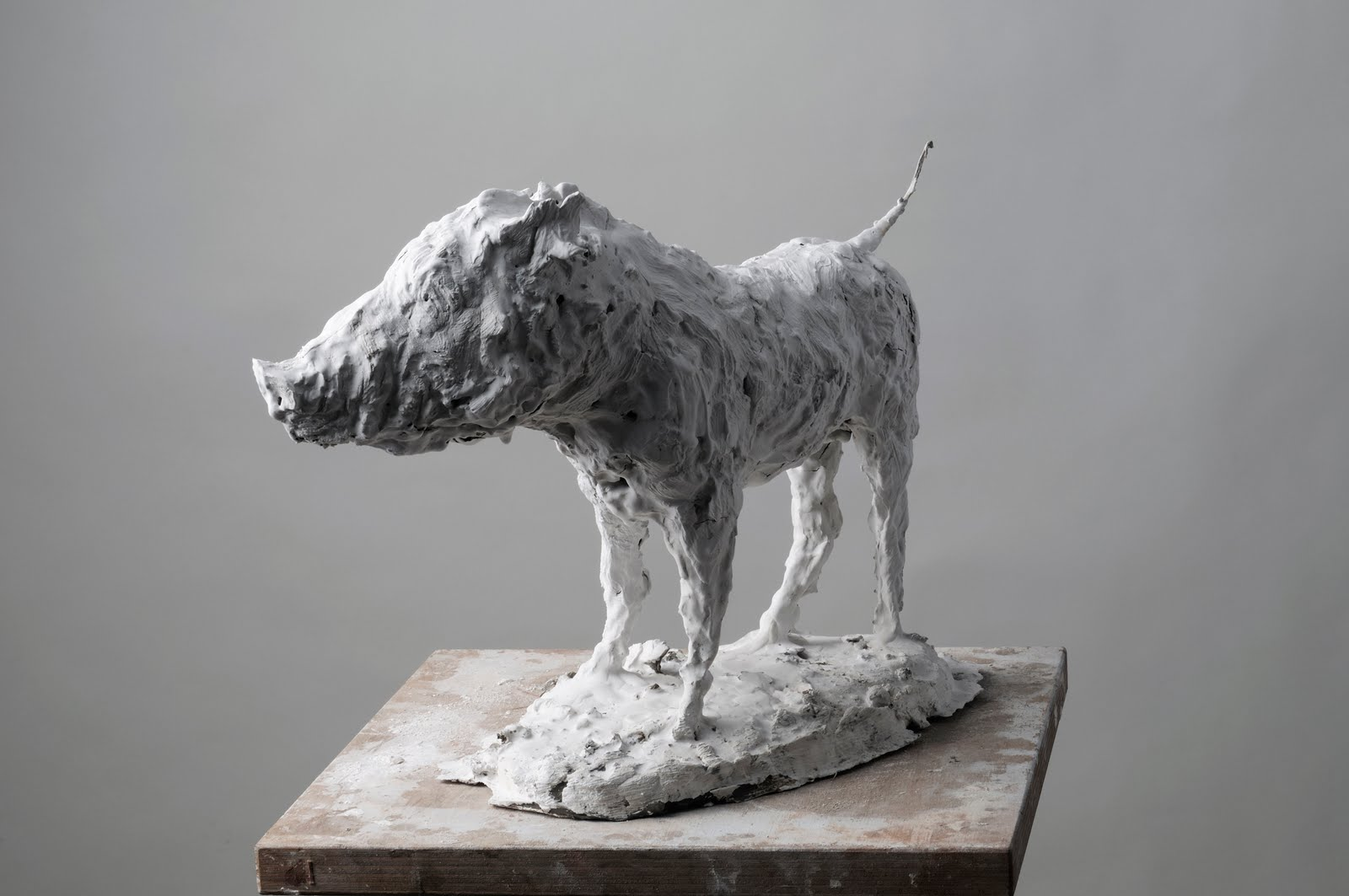 Nicola Hicks – Boar sculptures
