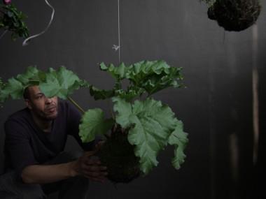 Fedor van der Valk – string gardens