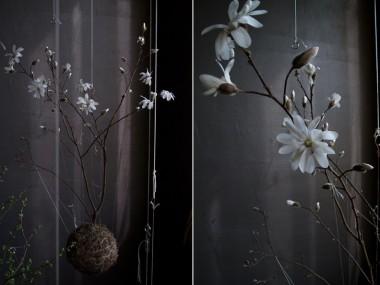 String gardens – fedor van der valk