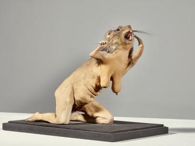 Muriel Belin, Folla ratt femella, 2007, TM, 18×14.5×20 cm / © Atelier De moulin/Abbaye d'Auberive