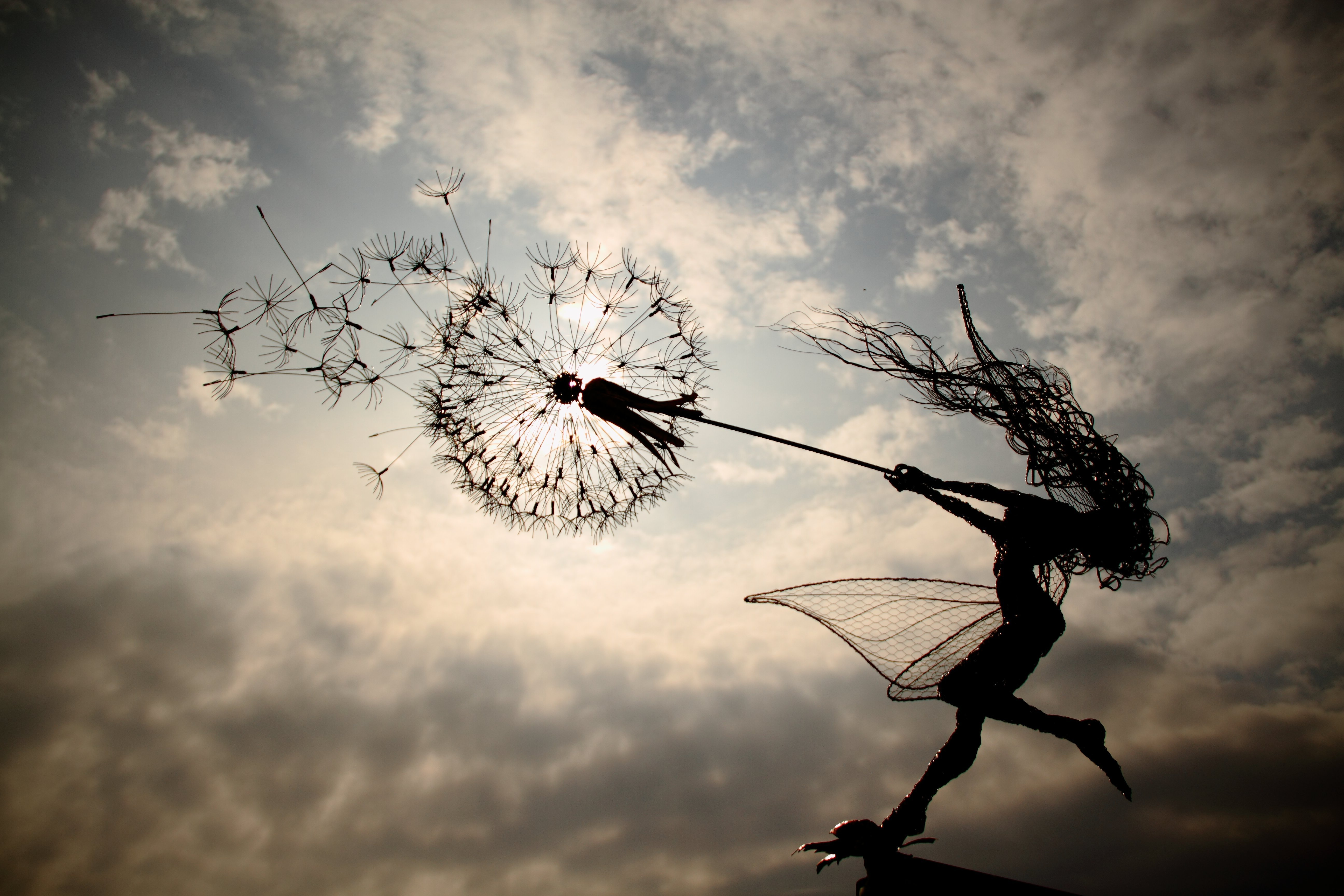 dancing with dandelions and robin wight blog graphiste sculptures photos ver vie