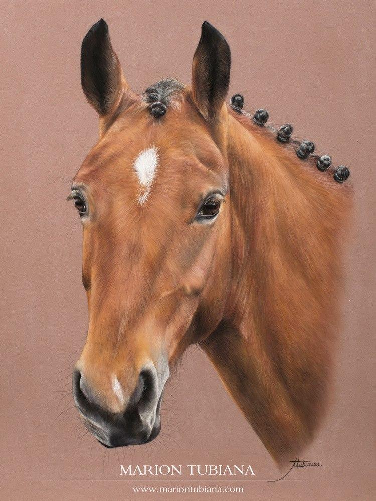Marion Tubiana – Horse Pastels