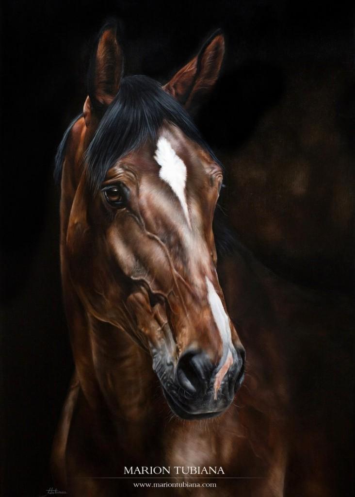 Marion Tubiana - oil painting - Peinture à l'huile 50 x 70 cm