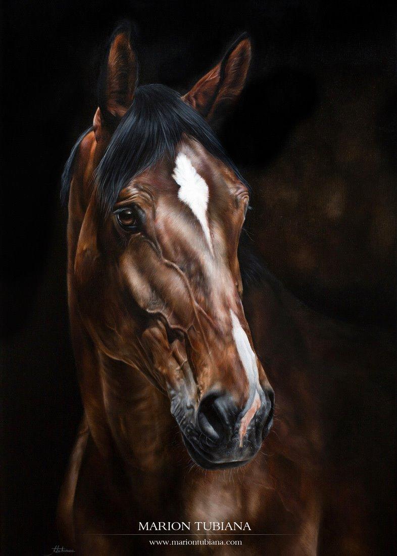 Marion Tubiana – oil painting – Peinture à l'huile 50 x 70 cm