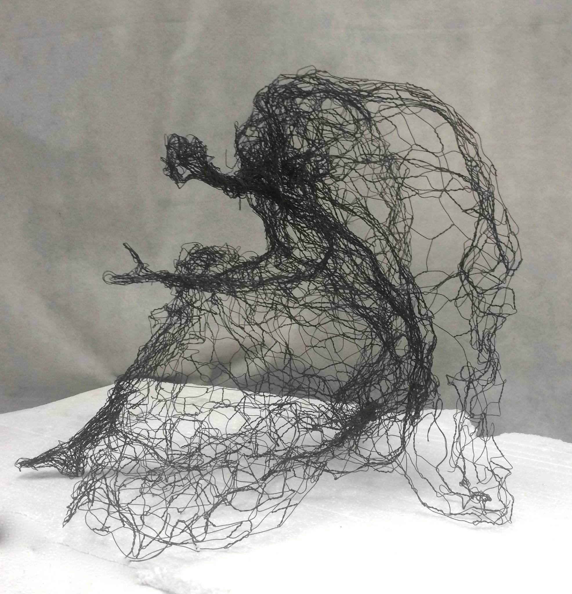 Wire mesh sculpture by Pauline Ohrel