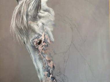 Tubiana Marion – Pastels et photographies / pastel equin in progress