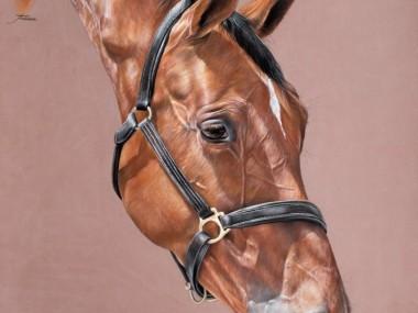 Tubiana Marion – Magnifiques Pastels cheval