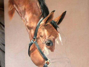 Tubiana Marion – Pastels cheval in progress