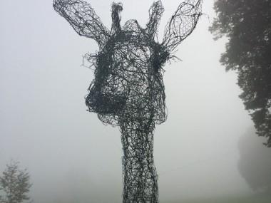 fil de fer sculptures by Pauline Ohrel – Giraffe