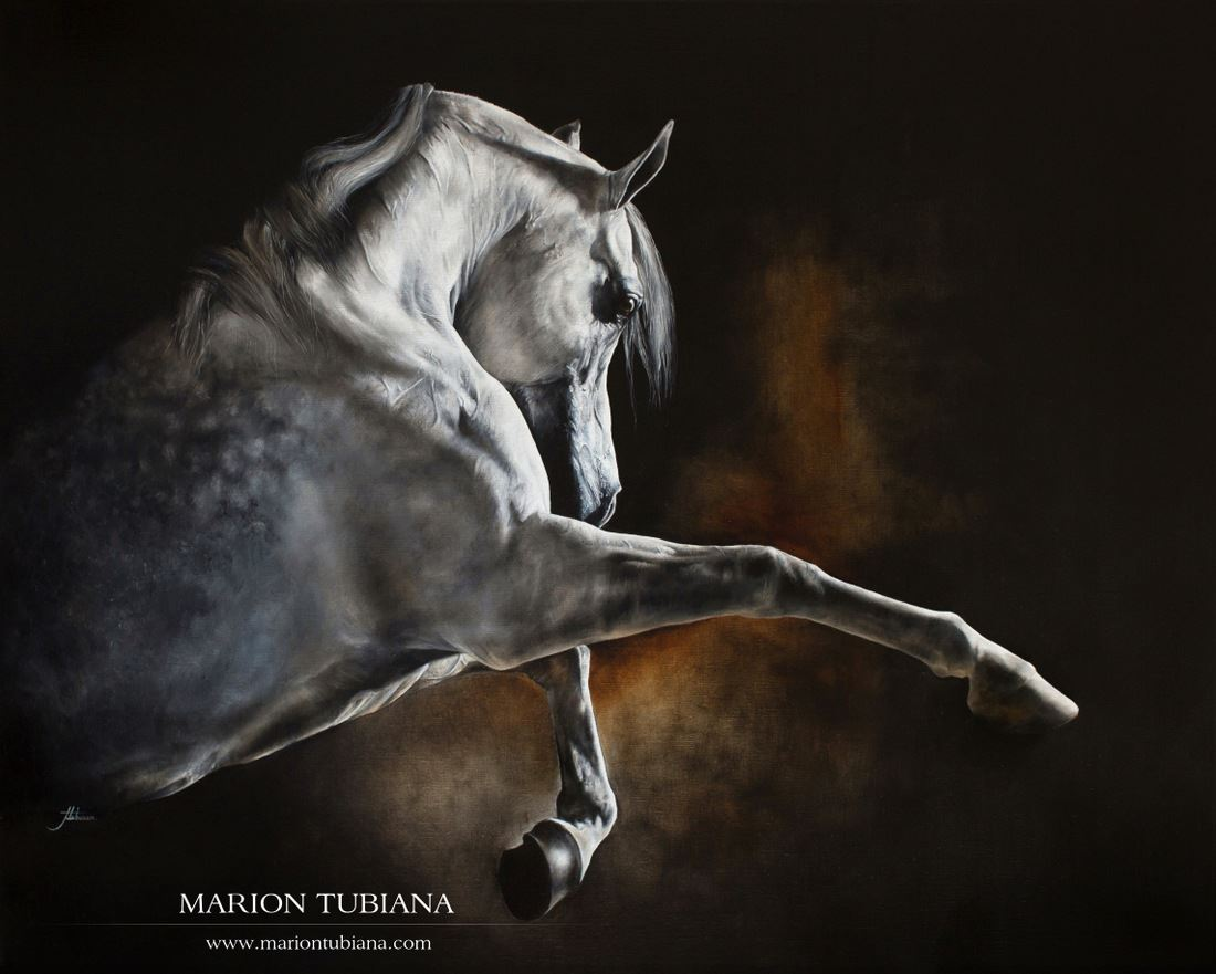 Marion Tubiana – Huile sur toile – Cheval