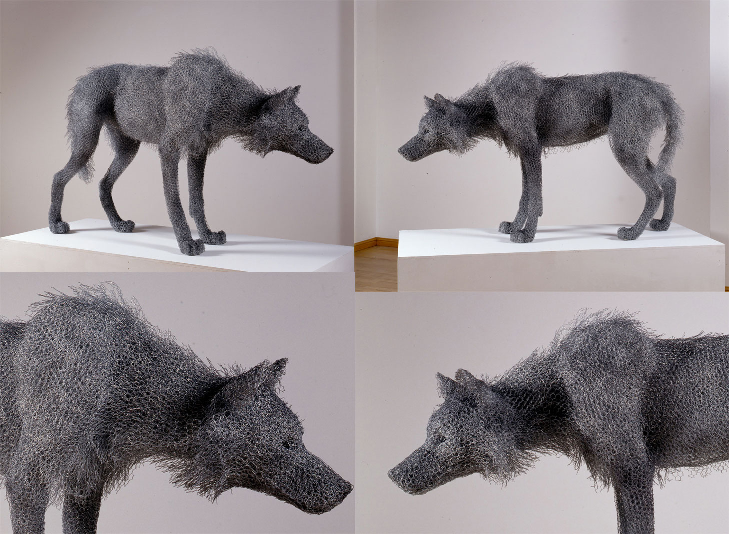 Kendra Haste – Timber wolf – Wire sculpture