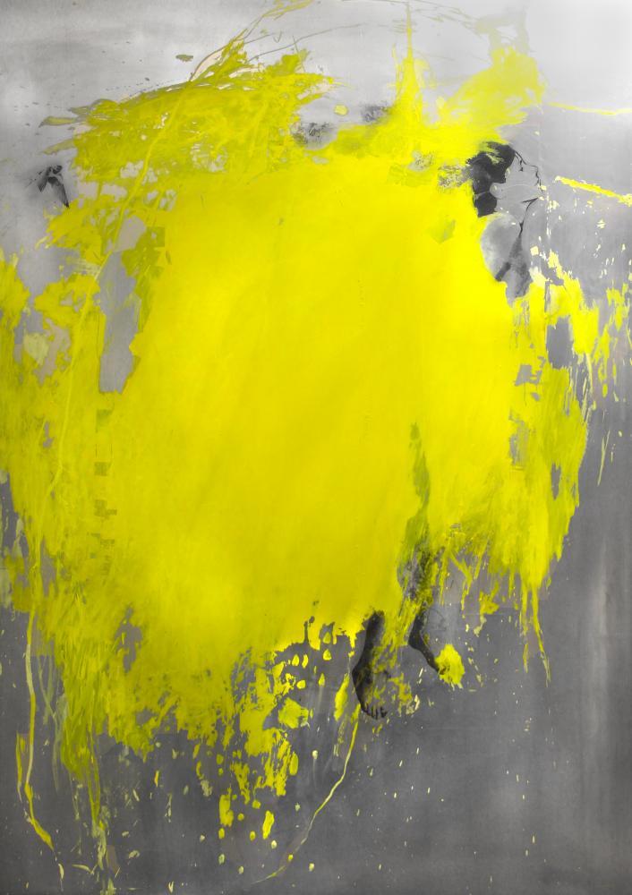 Marie-josee Roy -Lumen 60×84 huile, photo tranfert sur aluminium.