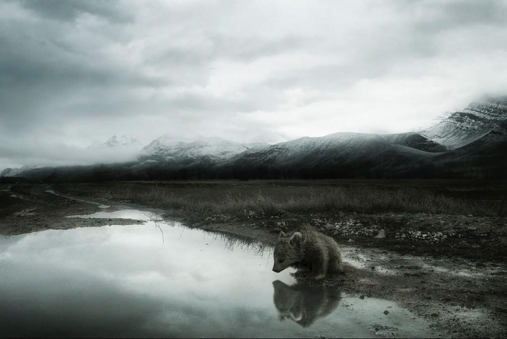 Sherry Akrami - Dena - Digitale manipulation