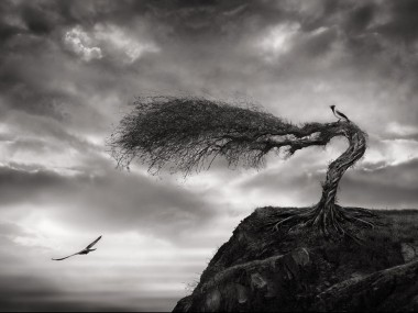 Sherry Akrami – Digitale manipulation