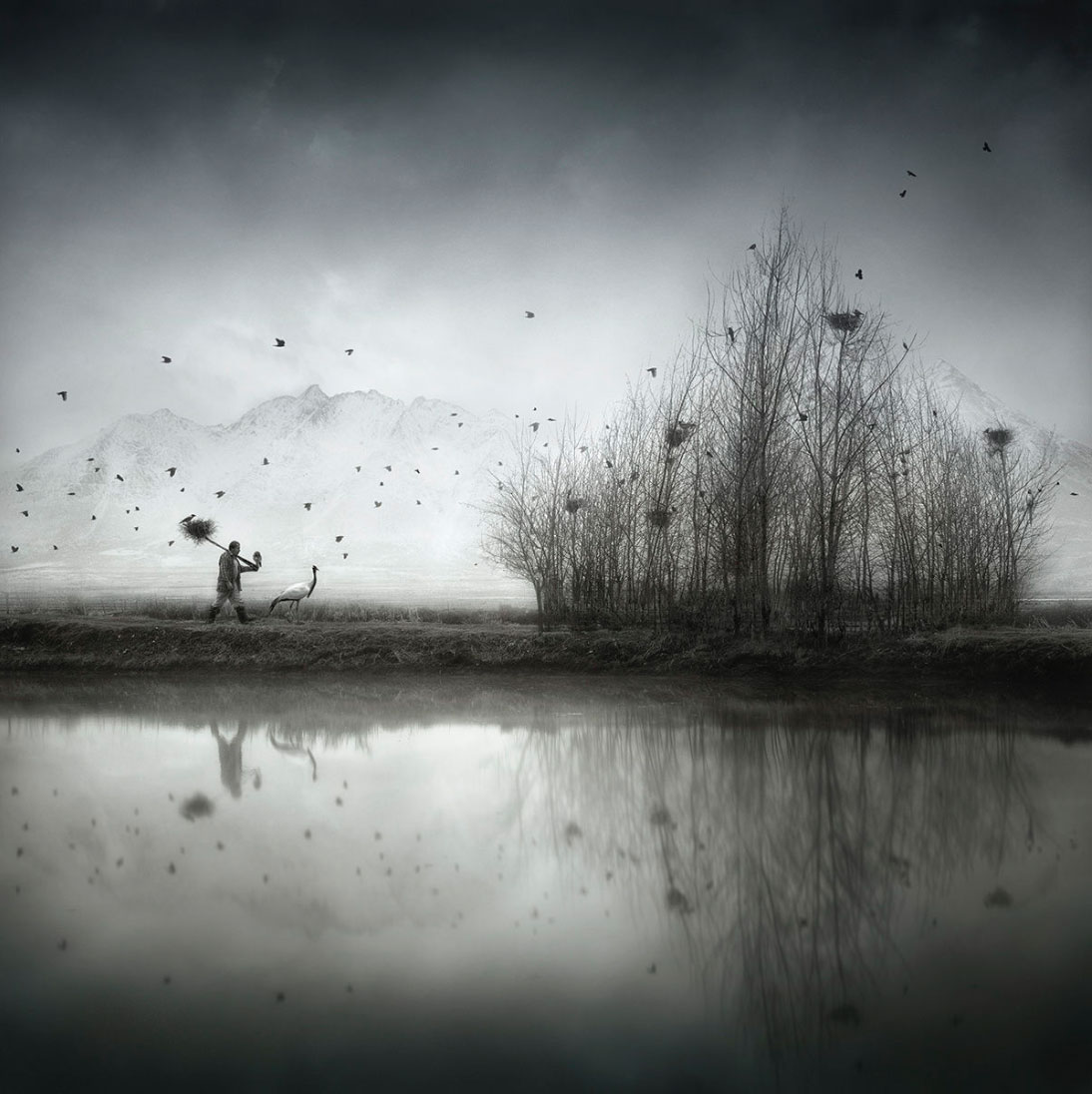 Sherry Akrami – Nest Builder – Digitale manipulation