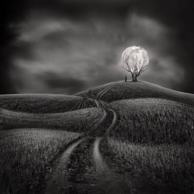 Sherry Akrami - digitale Art photo manipulation
