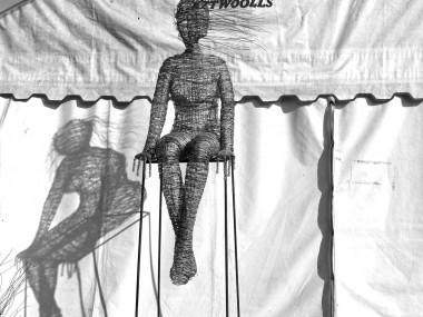 Rachel Ducker Wire Sculptures