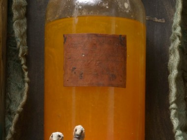 gerard cambon – Sculpture Elixirs