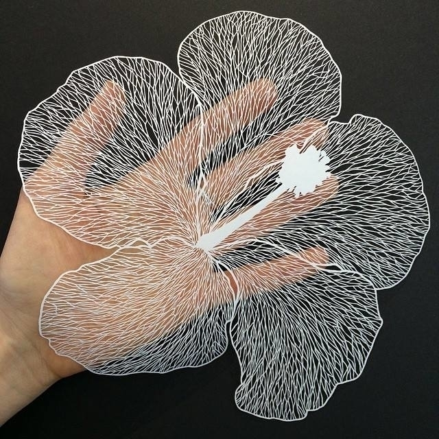Maud White - paper cut art flower