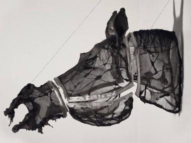 Eglantine Bacro – mixed-media artist – Nylon wire sculptures horse