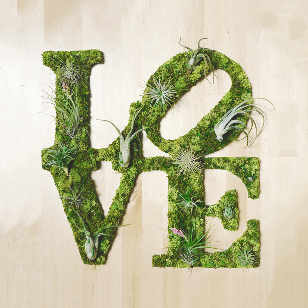 LOVE Plant Art
