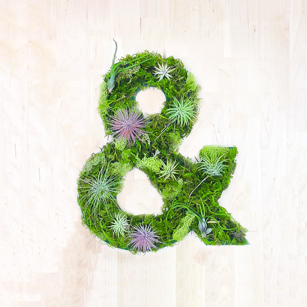 & Plant Art