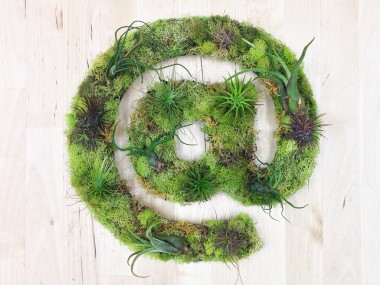 arobaze Plant Art