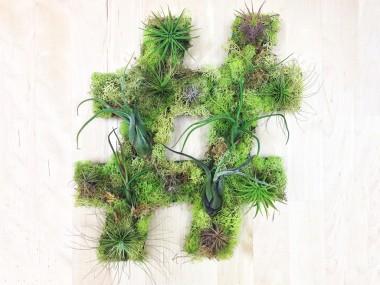 hashtag Plant Art