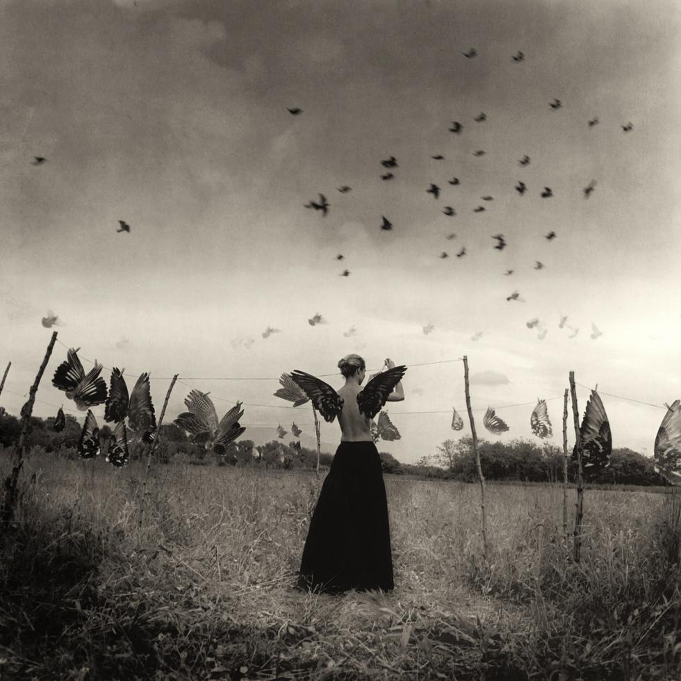 Roberto Kusterle – photo manipulation – le ali dei sogni