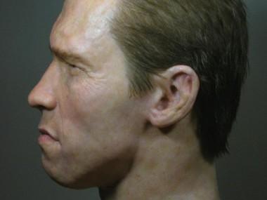 Steve Scott – Hyper Realistic Sculpture Silicone – Arnold Schwarzenegger