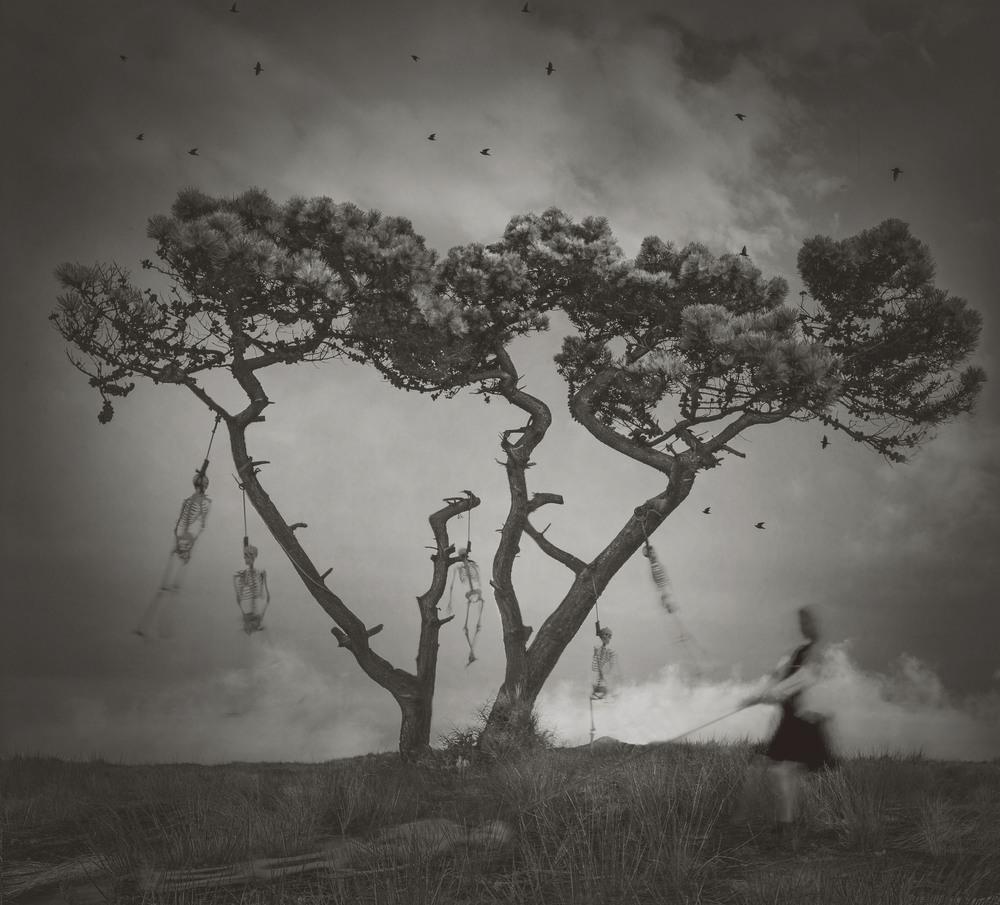 Richard Wood – Creative photographie