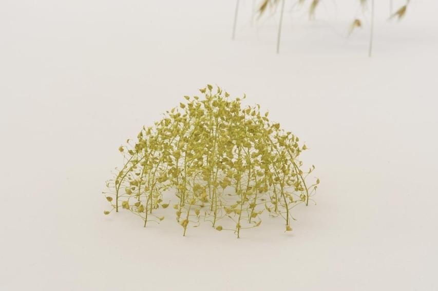 Christiane Loehr – Sculptures & installations nature morte – 2009, Pflanzenstengel, 6,5 x 13 x 12 cm