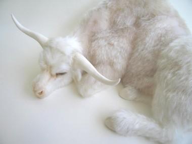 Christy Langer – Sculpture Rack – silicone, mohair, porcelain, resin, fibreglass, oil paint 28 x 30 x 18cm – 2011