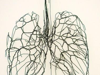 David Oliveira – Wire sculptures Poumons