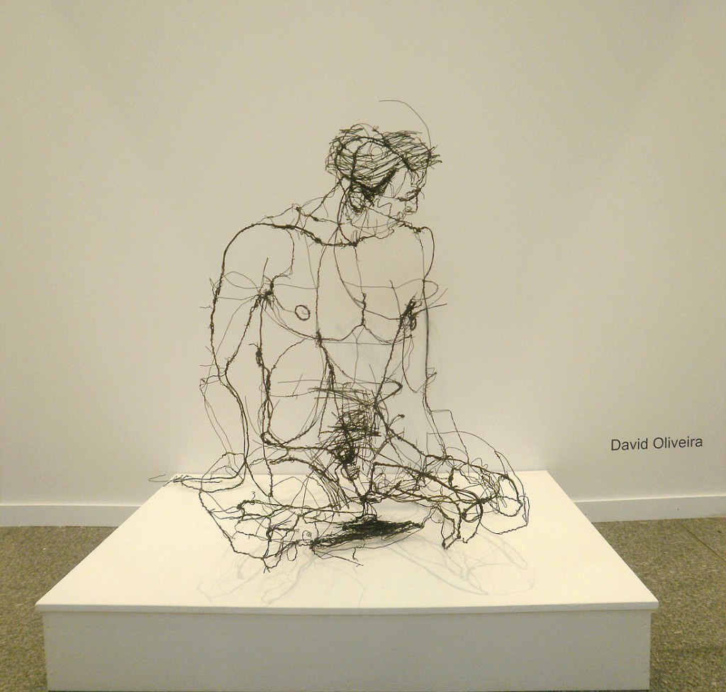 David Oliveira - Wire sculptures