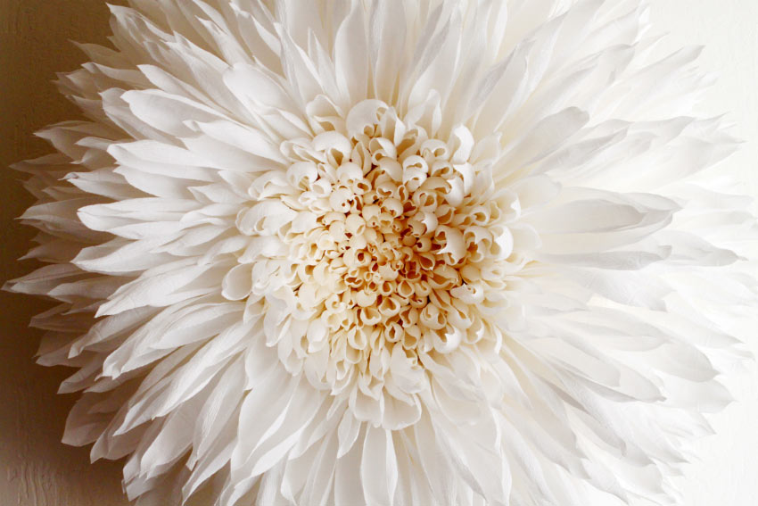 Tiffanie Turner – Paper flower art – dahlia