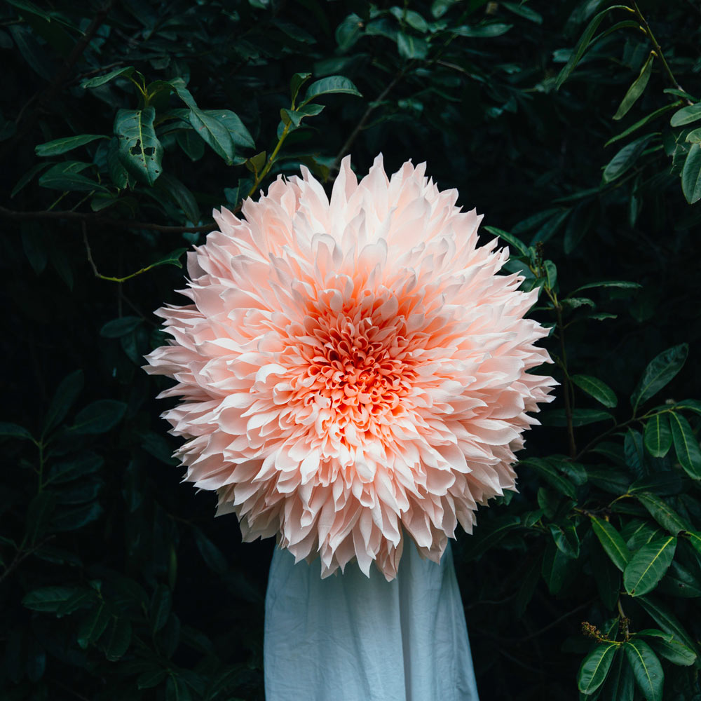 Tiffanie Turner – Paper flower art sculpture