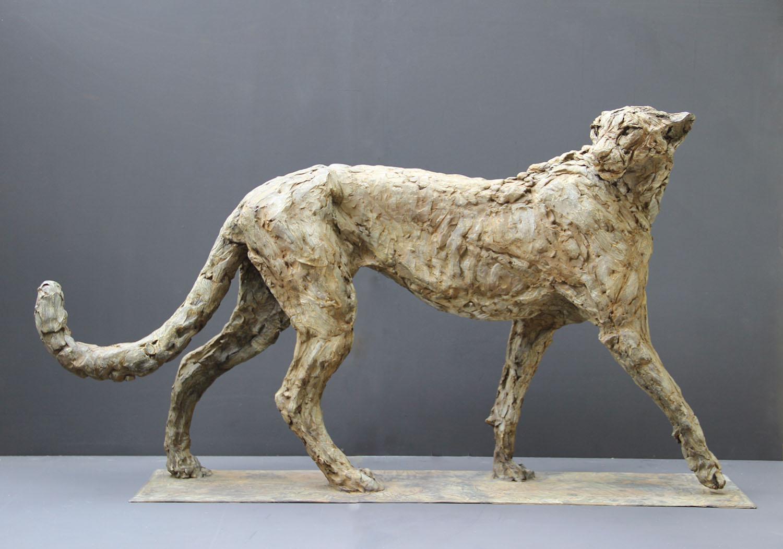 Patrick Villas - Sculptures - Cheetah mâle - Bronze - 66 x 128 x 28 cm