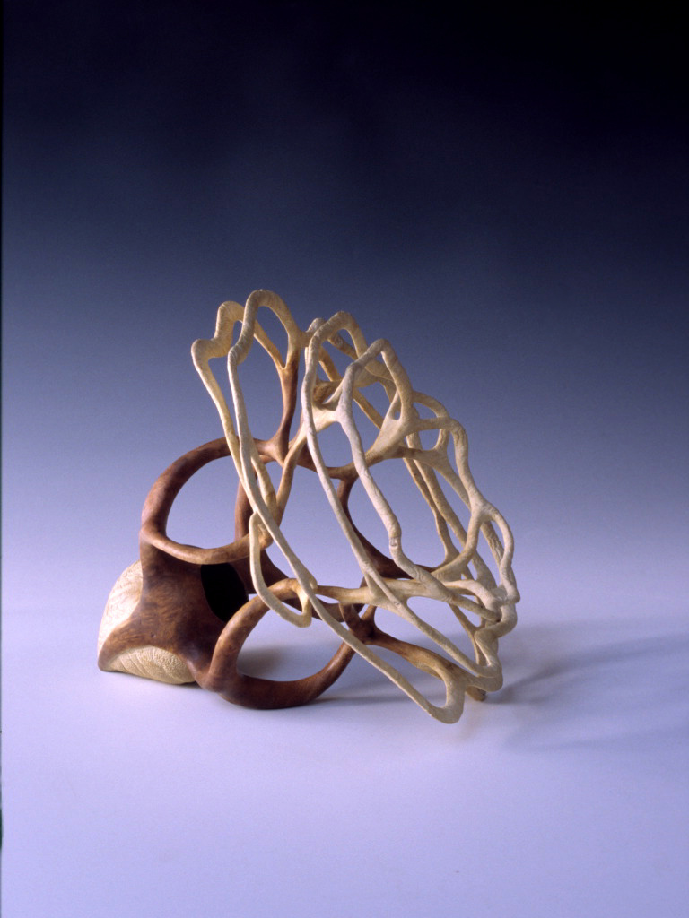 Alain Mailland - Sculpture La graine - Loupe d'Acacia