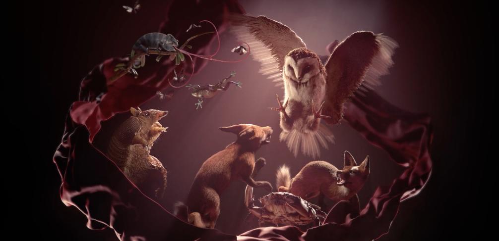 """Versus"" animation cinema4d"