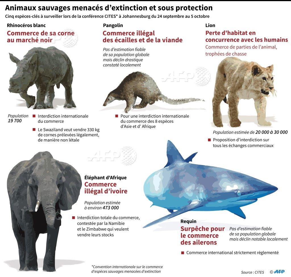 animaux sauvages menacées d'extinctions