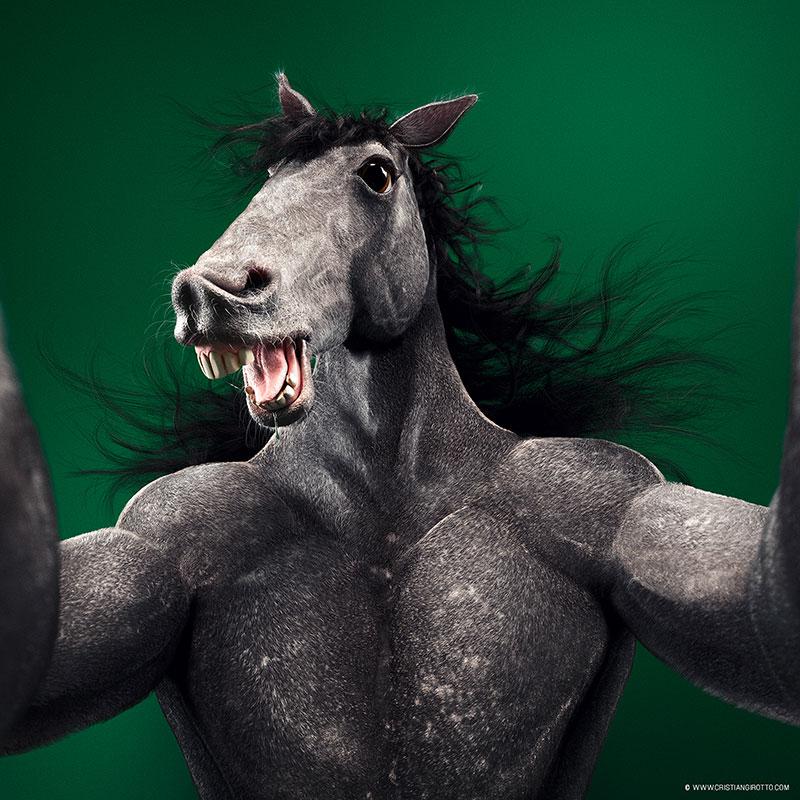 Digital 3D series Cristian Girotto – Selfie animal horse
