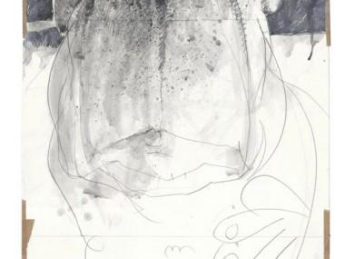 Frank Hoppmann – caricature satirique – Picasso