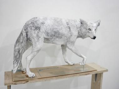 Midori Harima – Paper sculptures – America